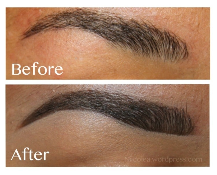 Eyebrow Talk Updated Eyebrow Pictorial Nicoles Beauty Blog